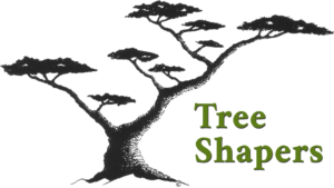 Tree Shapers logo